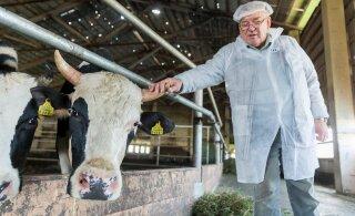 Juhan Särgava: loom ei ole selleks, et mõni tööpõlgaja talle kaikaga üle küüru saaks anda!
