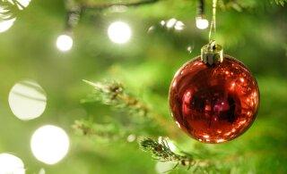 ФОТО: Смотрите, у кого в Ласнамяэ оказались самые красивые рождественские окна!