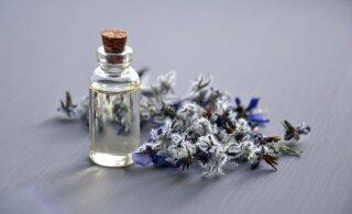 Русские мужчины любят ароматы ванили, а эстонские - жасмина. 12 фактов о духах, которые вы не знали