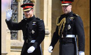 Принцы Уильям и Гарри пойдут на примирение ради бабушки