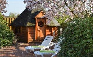 Seitse kasulikku nippi, kuidas pikendada oma sauna eluiga!