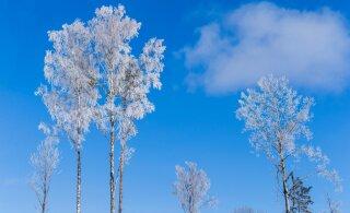 Nädalavahetus toob Lõuna-Eestisse krõbeda pakase