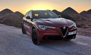 """""""Istmesoojendus"""": Alfa Romeo Stelvio Quadrifoglio - Eestis vähetuntud sportmaastur, millel iseloomust puudust pole"""