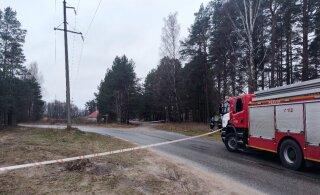 ФОТО С МЕСТА ПРОИСШЕСТВИЯ | Близ дома по уходу загорелась линия электропередачи