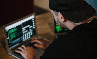 Как компании могут защитить себя от кибератак: советы специалиста