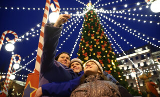 Дворцовую площадь Петербурга впервые за много лет украсит живая новогодняя ель
