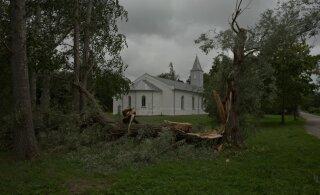 В Таллинне на человека упало дерево. Спасатели получили свыше 130 вызовов в связи со штормом
