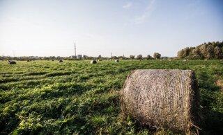 Agroökoloogilisel lähenemisel võib olla tulevikku