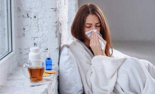 Kui gripp kimbutab: toidud, mida süüa ja söömata jätta. Lisaks perearsti nõuanded!