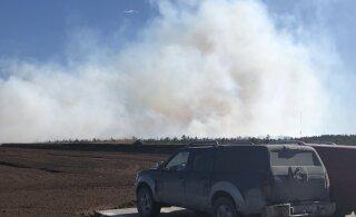ФОТО | В Пярнумаа горит торфяное болото. Из-за сильного ветра огонь быстро распространяется