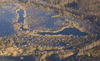 Mari Kartau: peavoolus mühanud vesi väreleb nüüd vaikselt sootides