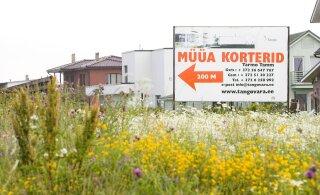 Действительно ли цены на недвижимость понизятся? Отвечает эксперт