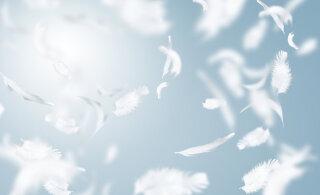 Taevaste abilistega suhtlemine: millistelt inglitelt abi paluda?