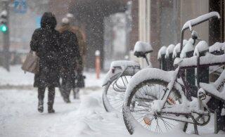 Метеорологи предупреждают: нас ждет сильная метель, штормовой ветер и 20 градусов мороза