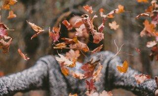 Sinu hea oktoober: asi, mida iga tähemärgi esindaja peaks enne kuu lõppu tegema
