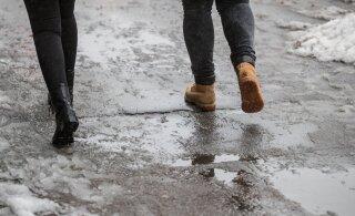 Снежная зима подошла к концу? На выходных — дожди и слякоть