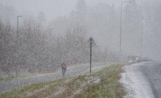 Kas tõesti viimaks valge talv? Pealinnas ja mujalgi Eestis sajab lund