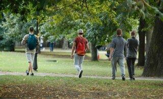 Таллиннские молодежные центры летом будут работать на свежем воздухе