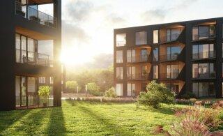Девелоперская компания Liven расширяется и привлекает финансирование в размере 3 млн евро