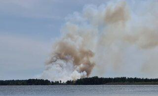 ФОТО и ВИДЕО | В Клоога горит большой участок леса