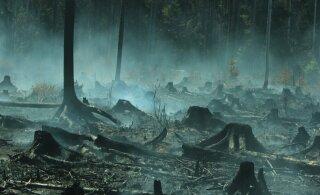В Забайкалье объявили режим ЧС из-за природных пожаров