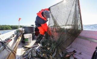 Читатель RusDelfi: государство хочет забрать улов рыбаков по демпинговым ценам
