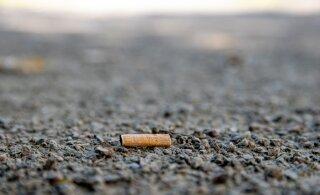 Читатели RusDelfi: Эхитаяте теэ из-за отсутствия урн превращается в мусорную свалку