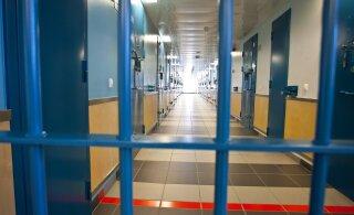 Отрезавший голову своей жене житель Ласнамяэ получил 17 лет тюрьмы