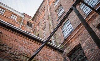 FOTOLUGU | Kreenholmi tehase valdustel hoiab silma peal kassikoloonia