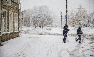 С зимой прощаться еще рано: на выходных в Эстонии ожидается метель