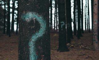 11 kõige põletavamat küsimust, millele iga mees vastust ihkab, kuid ei julge sult küsida