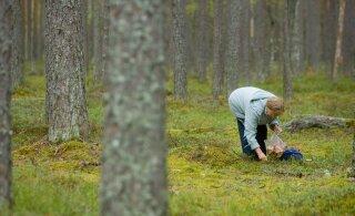 Südantsoojendav! Politsei aitas seenel ära eksinud prouad metsast välja
