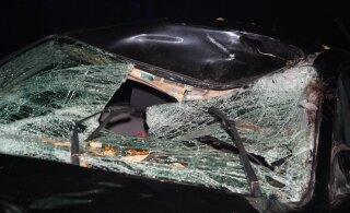 ФОТО | В Рапламаа лось бросился под колеса машины. Животное погибло, водитель - в больнице