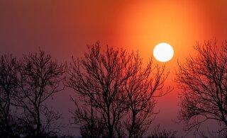 Teadlane selgitab: kust ja kuidas saabus ilusaid päikeseloojanguid põhjustanud tolm?