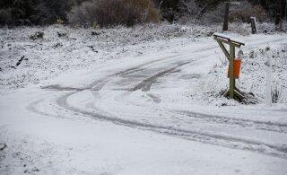 Похолодание и снег — это надолго? Поясняет эстонский синоптик