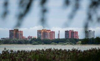 Terviseamet hoiatab: Stroomi rannas ei ole soovitav supelda