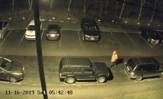 ВИДЕО И ФОТО | В Мустамяэ разбили зеркала не менее 11 машин