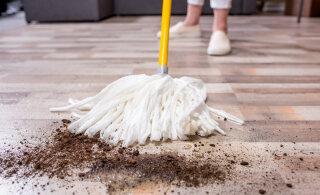 Täna on rahvakalendri järgi tuhkapäev: pese pesu ja korista aga küllaminekut ja juuksuriskäiku väldi!