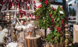 Selgus majas! Keskmiselt kulutatakse Eestis jõulukingitustele just nii palju raha