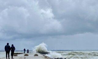 ФОТО И ВИДЕО | Шторм оставил без электричества 8000 домохозяйств, порывы ветра достигают 32 м/с. Повалены деревья, судоходные компании отменили рейсы