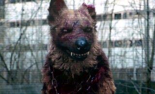 Волшебная сила искусства: дети после просмотра сериала сбежали из дома в Чернобыль