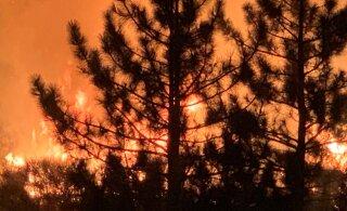 USA metsapõlengute saaste hõljus üle Euroopa