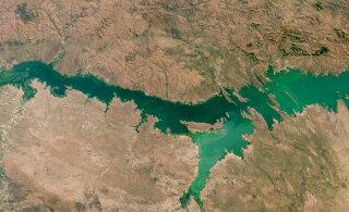 Üha sagedasemad mürgised vetikaõitsengud ohustavad nii joogivett kui ka turismi