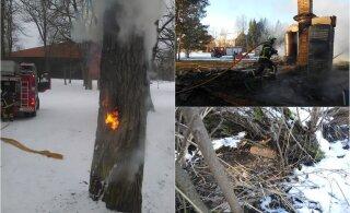 Et pühad tuleks pisarateta! Pea meeles küünalde ja jõulutulede ohutust: peamine tulekahju põhjustaja on hooletus
