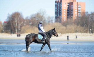 FOTOD | Pühapäev tõi Stroomi randa senisest vähem inimesi