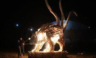 ФОТО | Пыхья-Таллинн встретил год Крысы костром из елок и огненным шоу