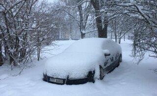 МуПо бессильна против автомобилей, припаркованных на покрытых снегом зеленых зонах