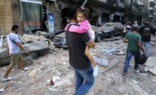 Почему так опасна аммиачная селитра и как избежать взрывов как в Бейруте?