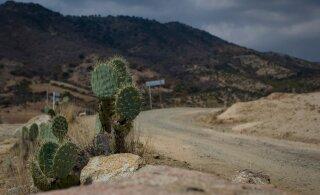 DELFI MEHHIKOS   Mehhiko rallil oleks reedene päev äärepealt sõitmata jäänud
