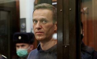 Amnesty International проведет внутреннее расследование из-за Навального